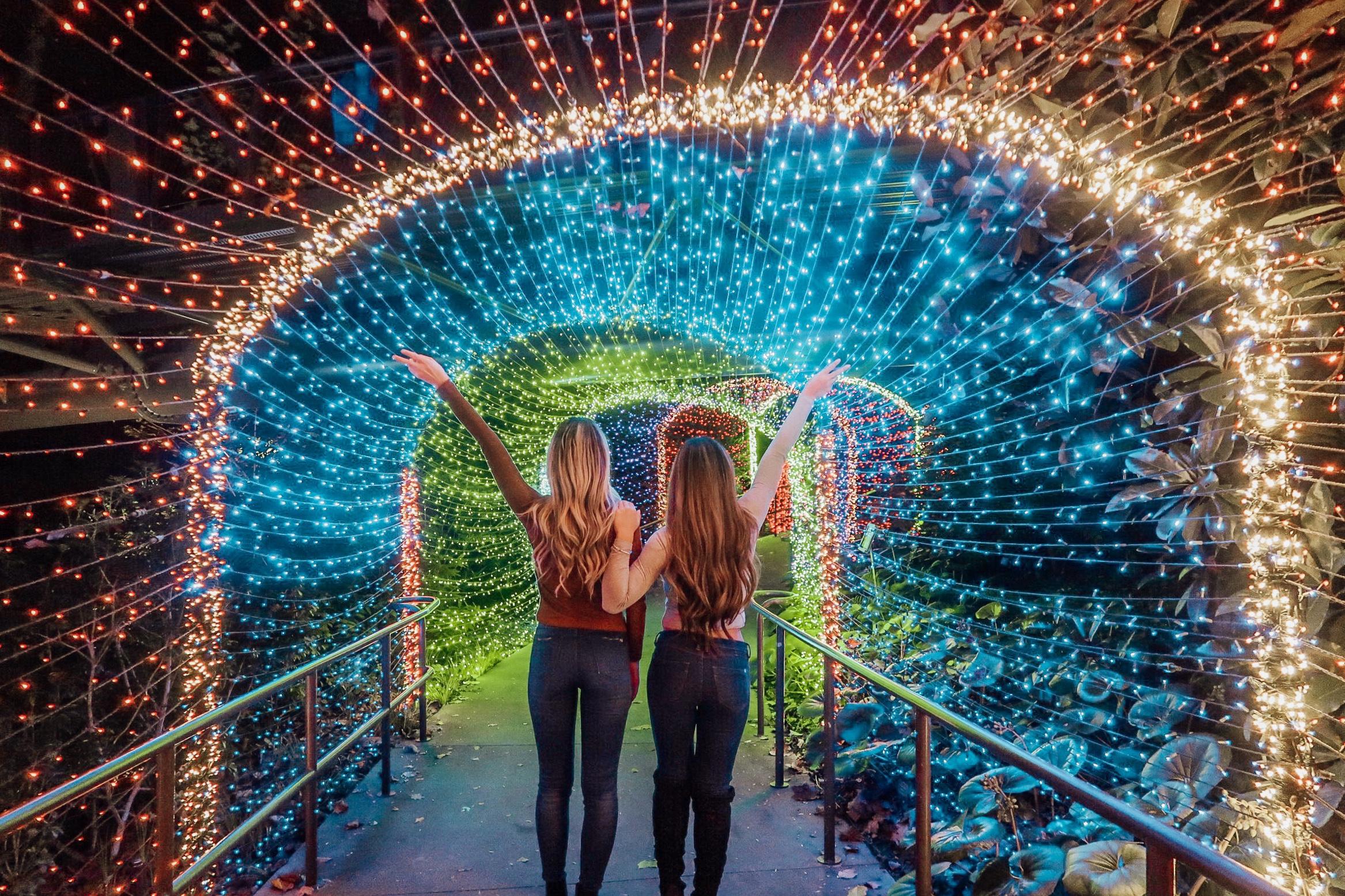 Holiday Lights at Atlanta Botanical Gardens!