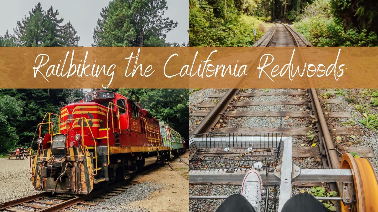 Riding the Skunk Train & Pedaling Through California Redwoods on Railbikes!